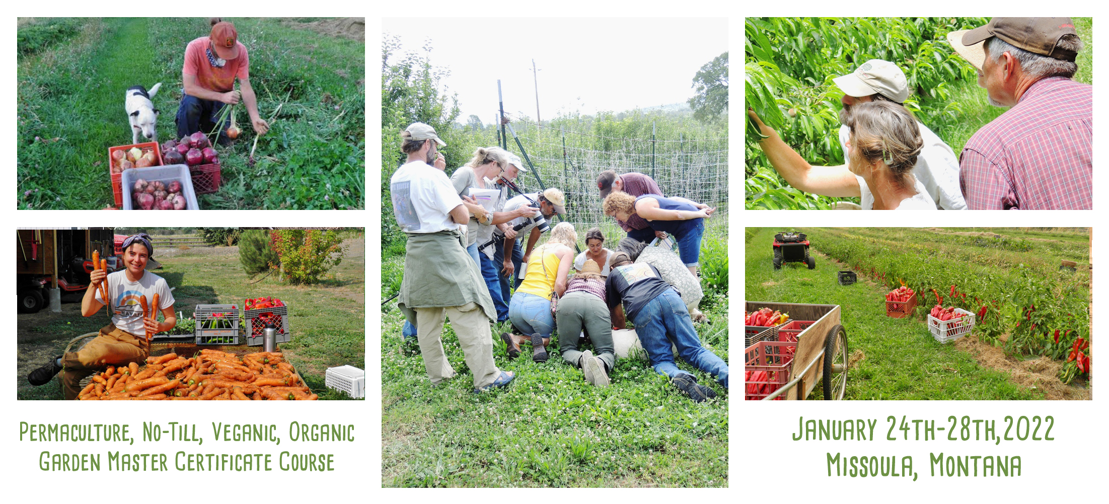people learning permaculture biodynamic gardening atHelen atthowe garden master course
