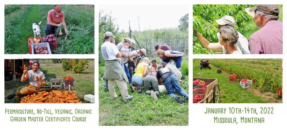 garden master course at wheaton labs